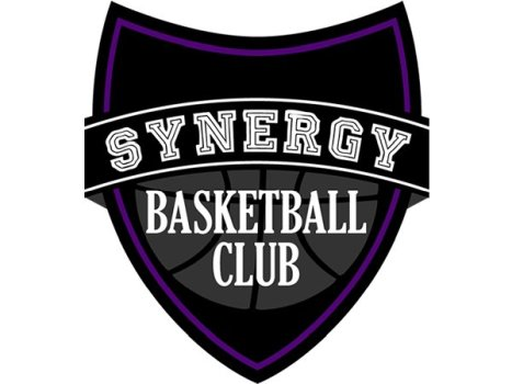 Synergy Basketball Club 2017